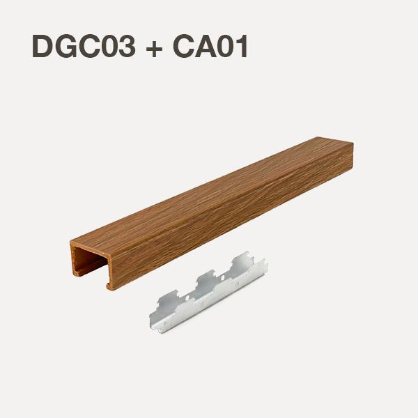 DGC03+CA01