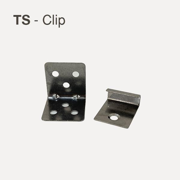 TS-Clip